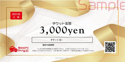 サンプル3,000円チケット